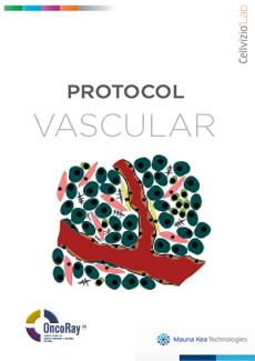 Cellvizio Lab Protocol Vascular