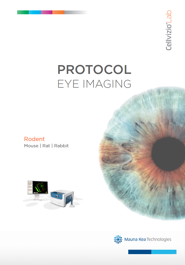 Lab - Eye protocol